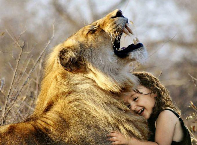 dziecko lew