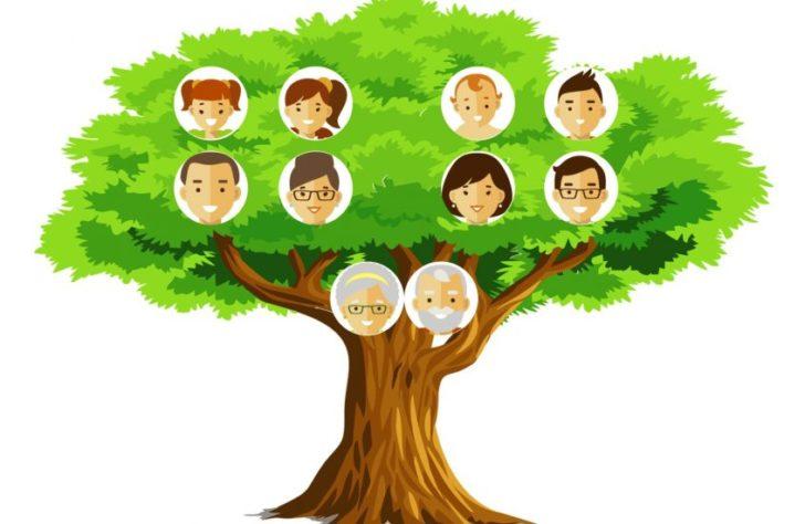 DrzewoGenealogiczneM-scaled-e1576174564401-845x550